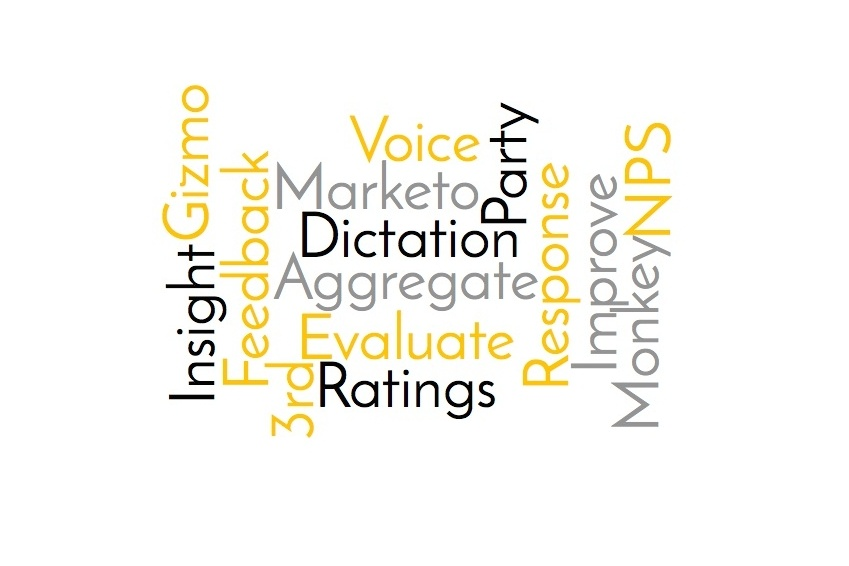 Feature Spotlight: Surveys