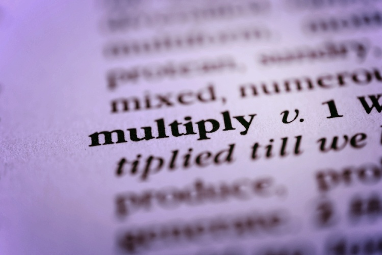 Social Amplification and the Multiplier Effect